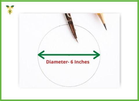 6 inches diameter circle